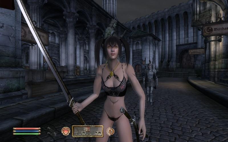 Guild Wars vs Morrowind vs Oblivion Oblivi10