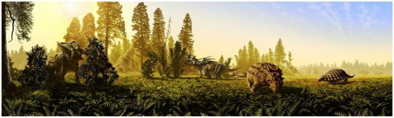 Les mégadinosaures herbivores canadiens avaient des végétaux attitrés Par Quentin Mauguit 05bc0b10