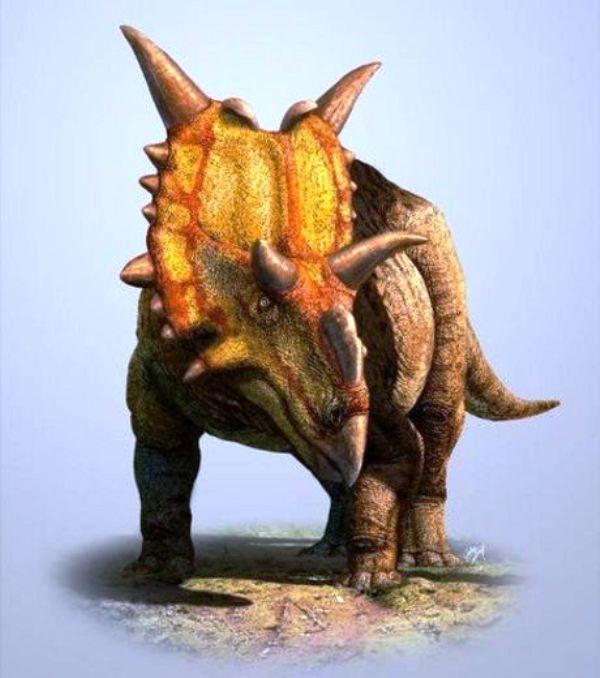 Les mégadinosaures herbivores canadiens avaient des végétaux attitrés Par Quentin Mauguit 83319110