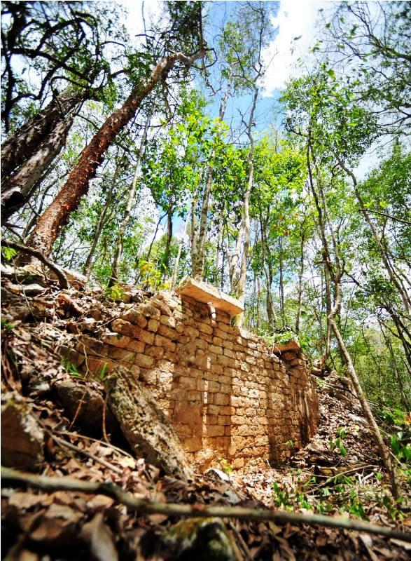 Des archéologues ont découvert une cité Maya perdue depuis plus d'un millénaire dans une forêt au Mexique par Corentin Vilsalmon Des-ar10
