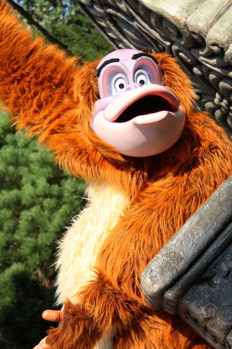TR Séjour au Séquoia Lodge du 17 au 20 septembre 2012 // Séjour au Séquoia Lodge du 20 au 22 novembre 2012 pour nos 6 ans page 6 Disney41