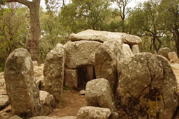 dolmen de la cova d'en Daina Dolmen15
