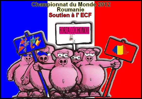 Soutien à l'ECF aux CHAMPIONNATS DU MONDE 2012 en Roumanie... Flag-f10