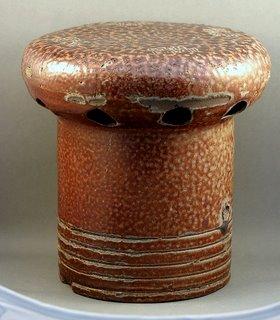 Crum Mushroom Crum_m10