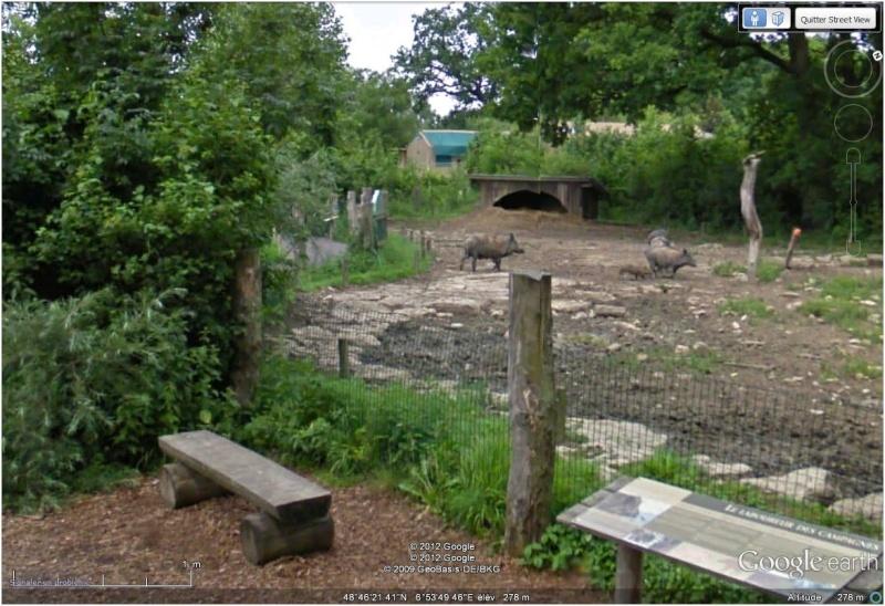 Le parc animilier de Sainte Croix à Rhodes (Moselle, France) Sangli10