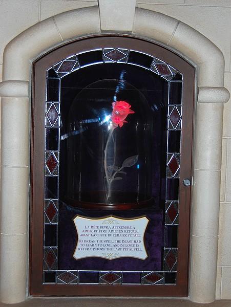 Un anniversaire inoubliable à Disneyland Paris <3 - Page 7 Copie372