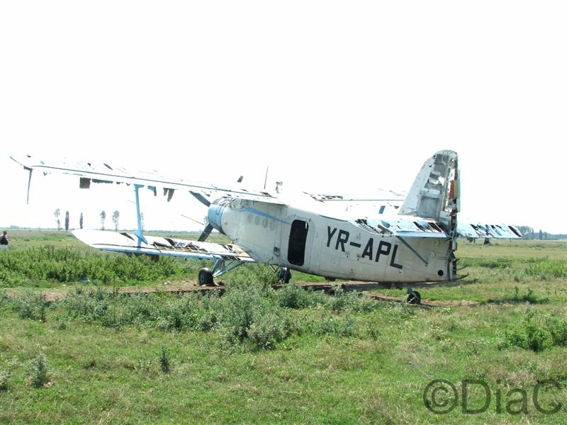 Antonov An-2 - Pagina 4 29_08_11