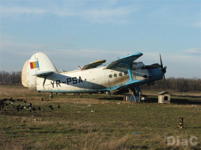 Antonov An-2 - Pagina 4 Dscf1110