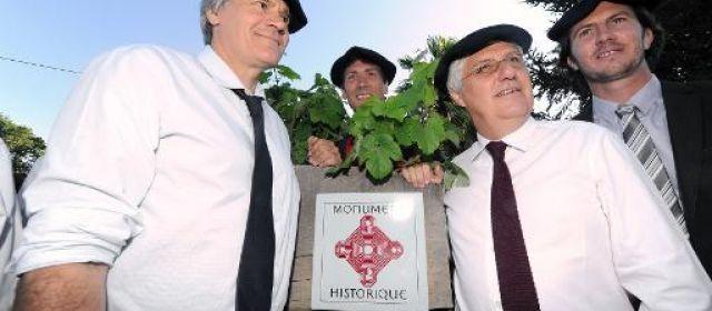 Dans le Gers, un vignoble inscrit aux Monuments historiques 30186810