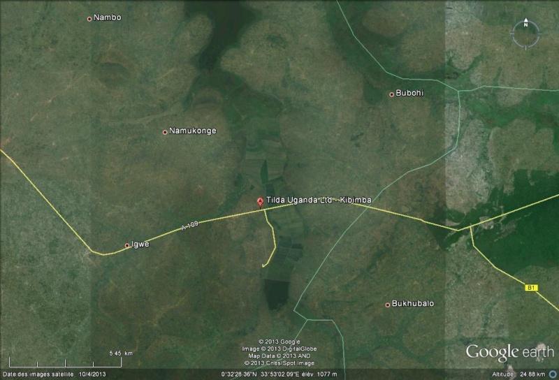 L'Ouganda extermine 1,8 million d'oiseaux pour protéger des rizières Kibimb10