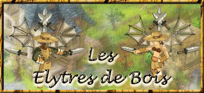 Les élytres de bois, livres communs des mercenaires (Dofus)