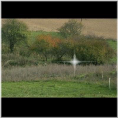 camouflage sur le terrain Eclat110