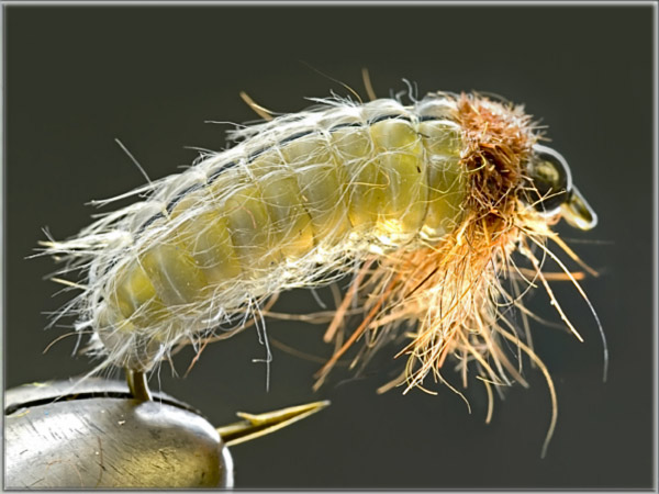 Realistic fly i advanced tehcnics of Fly Tying by Ibro - Page 2 01111