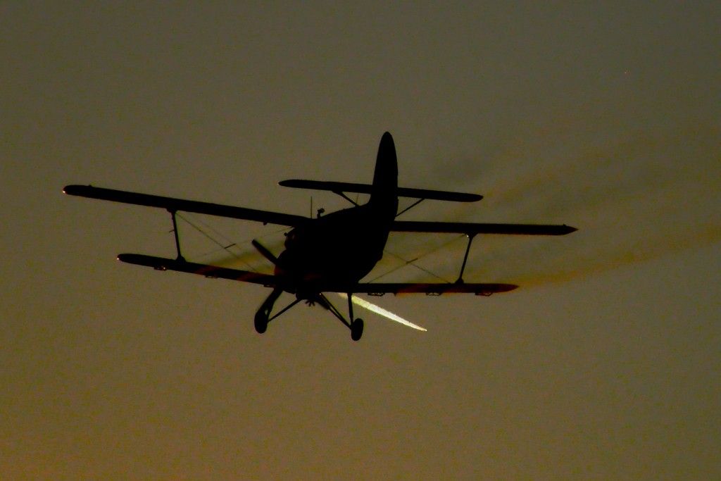 Antonov An-2 - Pagina 24 P7010111
