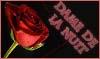 Foro gratis : Dame De La Nuit - Portal Afilia11