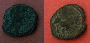 Semis de Castulo (FAB728) Iberic10