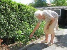 Het verhaal van een Sliedrechtse moeder die met haar vijf dochters de Jappenkampen overleefde 94235711