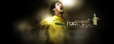 Composition Pato_s10