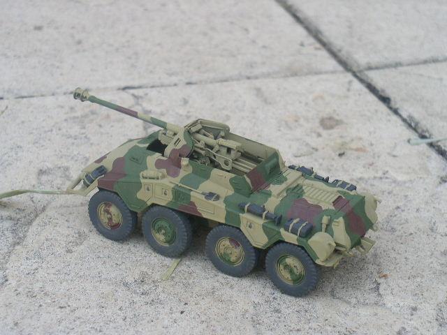 Sd.Kfz.234/4 [ITALERI 1/35] P1010117