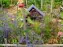 Maisons et hôtels à insectes pour le jardin le potager ..  Sam_0010