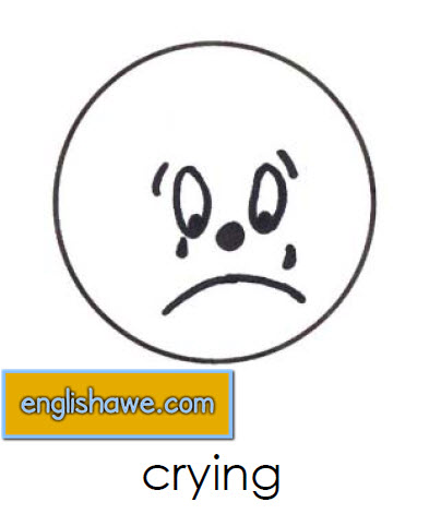 بطاقات تعليمية للوجوة التعبيرية فى اللغة الانجليزية بالصور للاطفال  Facial Expressions for Childred   315