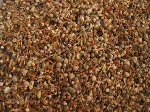 Grains De Santé Graine10