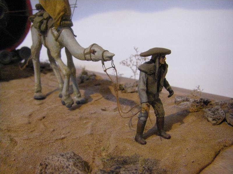 maquettes carton SW,pods,cargot... Imgp6411