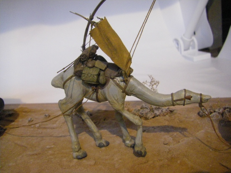 maquettes carton SW,pods,cargot... Imgp6412