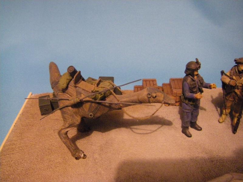 maquettes carton SW,pods,cargot... Imgp6413