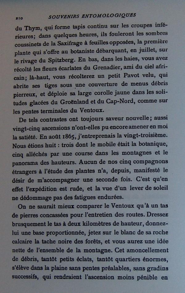 Fabre et le Mont Ventoux - Août 1865 Fv210