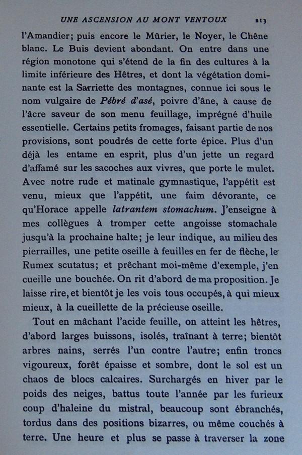 Fabre et le Mont Ventoux - Août 1865 Fv510