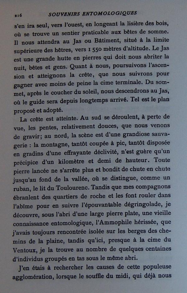 Fabre et le Mont Ventoux - Août 1865 Fv810