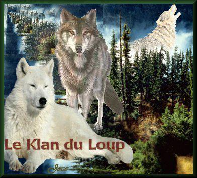 association Le Klan du Loup 12083210
