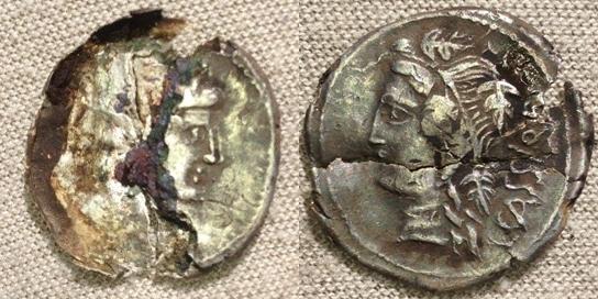 1 romaine coupée en 2 ... L_cass10