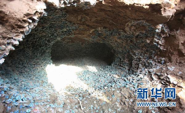 Nouveau trésor découvert P2010110