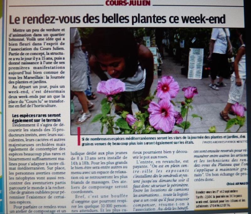 LA VEGETATION MEDITERRANEENNE - Page 6 P1300729
