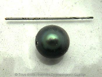 Perle de Tahiti dans de l'eau de Javel Javel_10