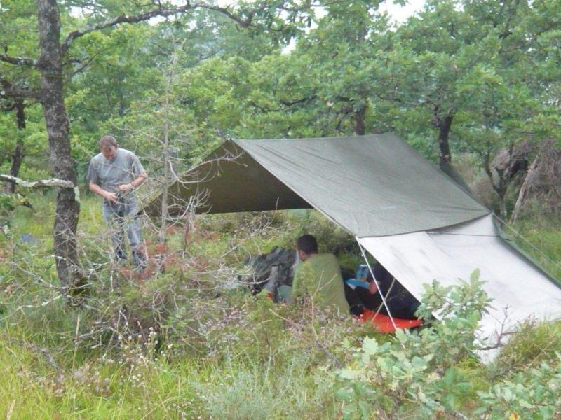 Comment monter un tarp P1010114