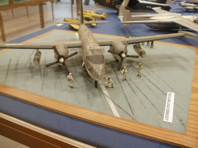 [ Les Musées en rapport avec la Marine ] Musée de l'Aeronautique Navale de Rochefort - Page 3 P7170320