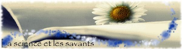 Lecture en ligne Sav10