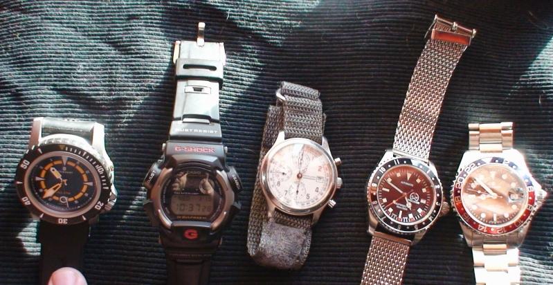 Quelle montre choisir ?  Dsc02810