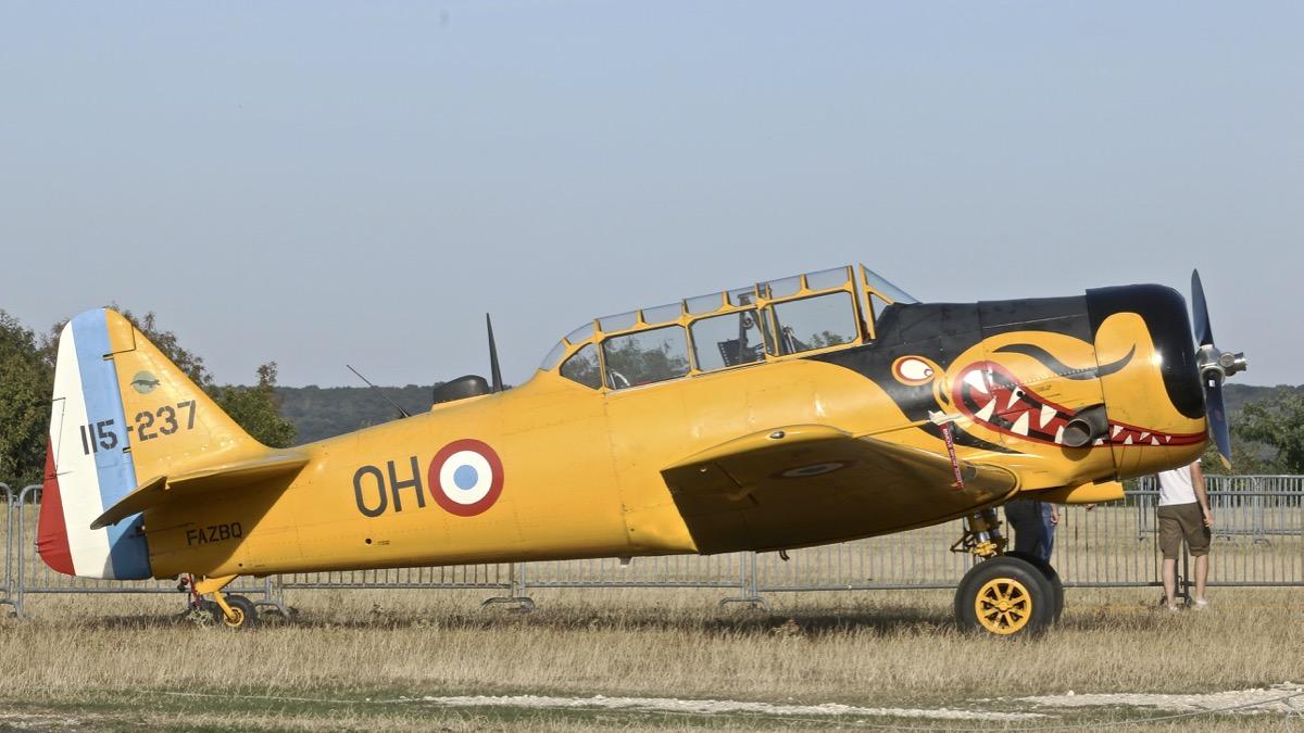 Aérodrome de La Ferté Alais - Page 28 Img_9122