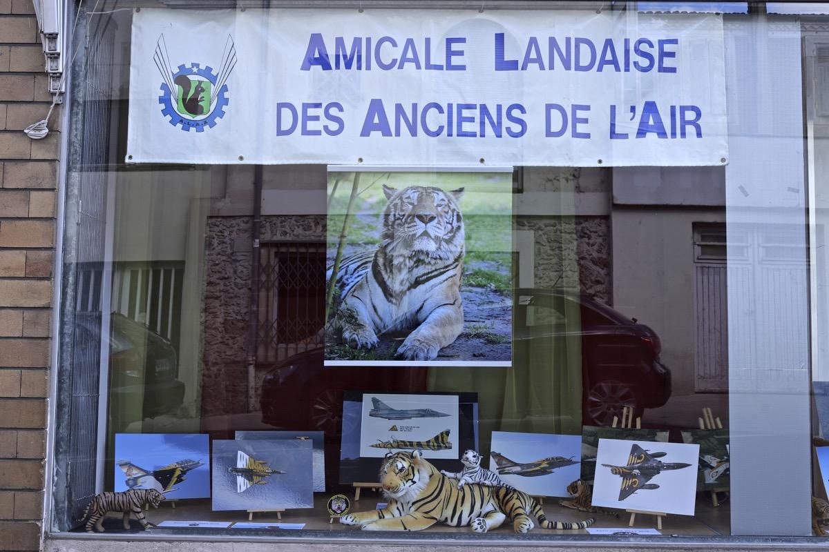 Nato Tiger Meet 2019 - Mont de Marsan 17 mai - Page 18 Img_9837