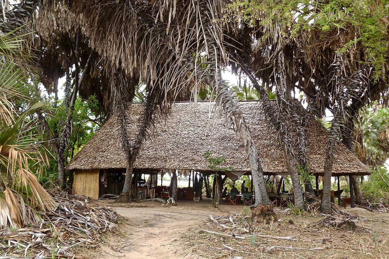 SAFARI Photo dans le sud de la TANZANIE.   FIN le 30 / 04/ 2020 . P1060210