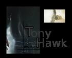 Evaluation de Momo Tonyha15