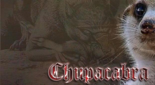 Kusuma's Siggie Shop - Page 2 Chupac11