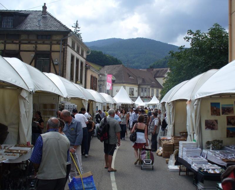 Sainte-Marie-aux-Mines 2013 : 50e anniversaire de la bourse minéralogique 1c10