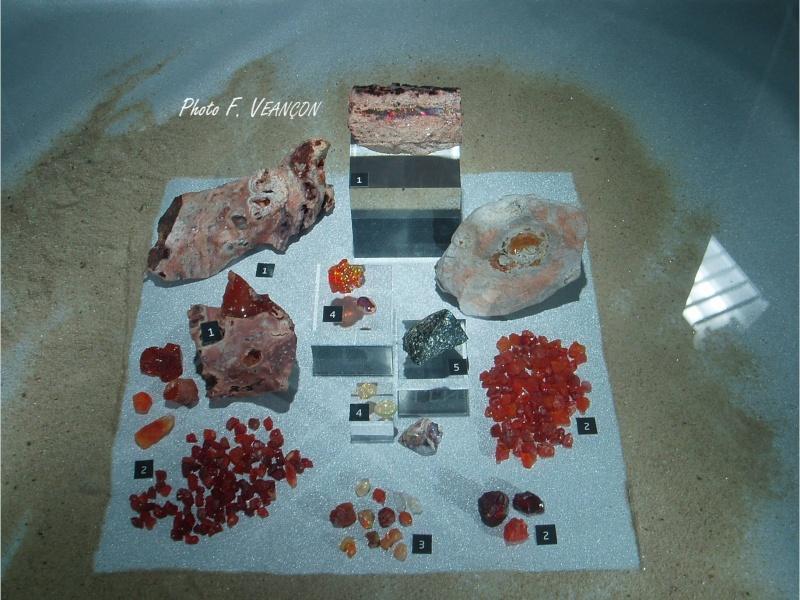 Sainte-Marie-aux-Mines 2013 : 50e anniversaire de la bourse minéralogique 25f10