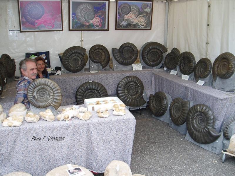 Sainte-Marie-aux-Mines 2013 : 50e anniversaire de la bourse minéralogique 27b10