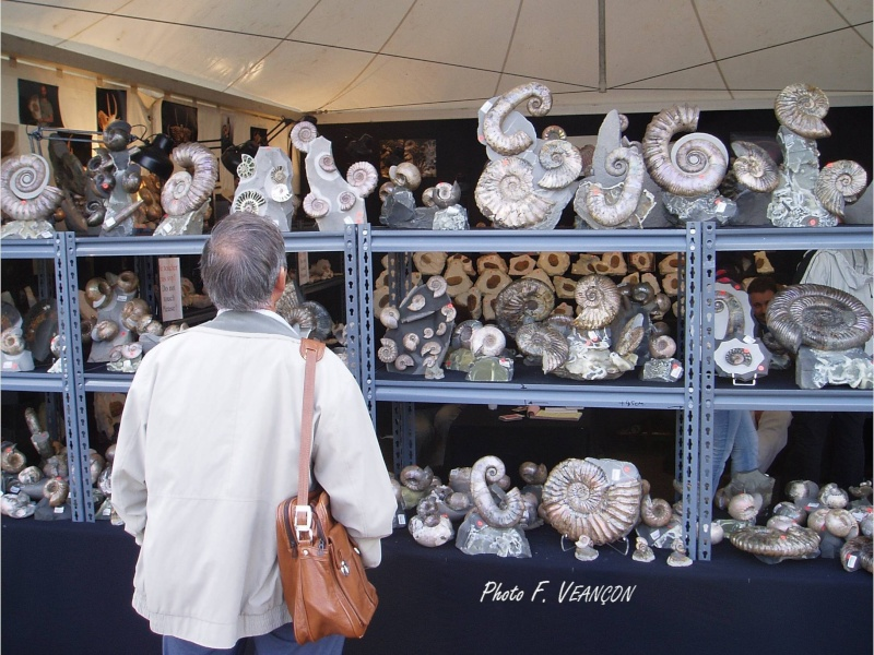 Sainte-Marie-aux-Mines 2013 : 50e anniversaire de la bourse minéralogique 28a10